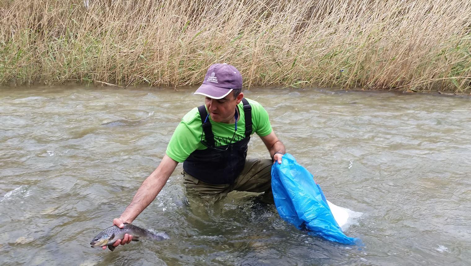 Pesca colaborativa en Comunidad Valenciana