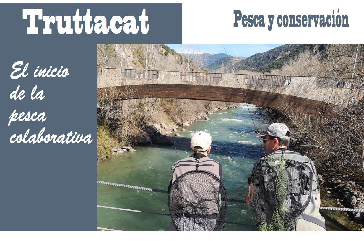 Pesca colaborativa en Cataluña